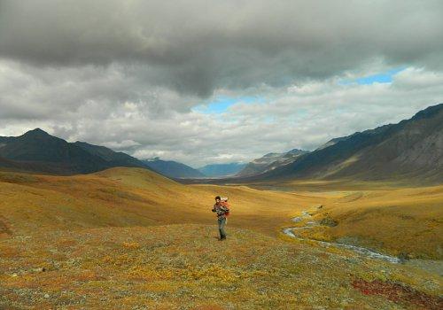 Traversée de l'Alaska en solo - 16h30